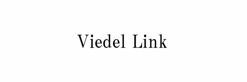 ViedelLink