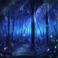 夜山の休憩所
