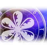 ❃ ASTERITIA ❃