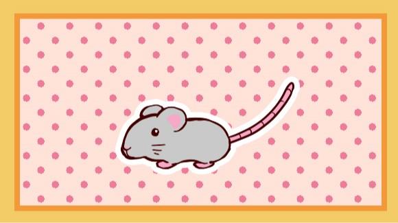 ネズミのしっぽ