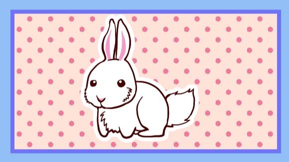 ウサギのしっぽ